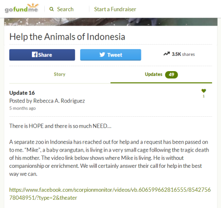 5 months ago she posted about the baby orangutan and asked for donations 1
