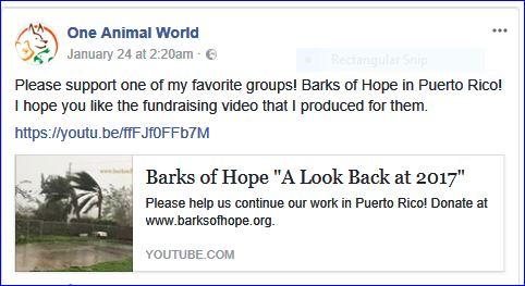 barks of hope fundraising video
