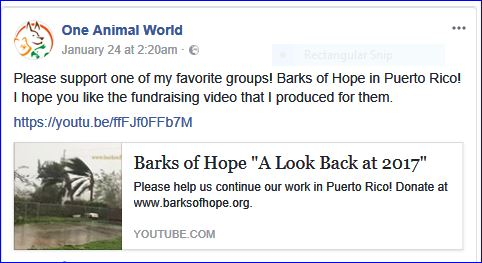 barks of hope fundraising video
