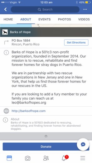 barksofhope in partnership with 2 orgs 1 in nj 1 in ny