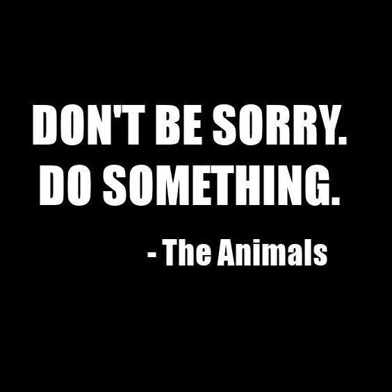 dontbesorry