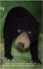 scuzzy sun bear