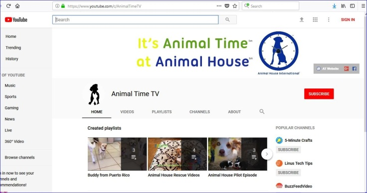 animal time is animal house