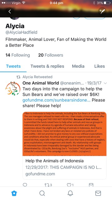 alycia tweeting proof campaign is for sun bears and animals of indonesia