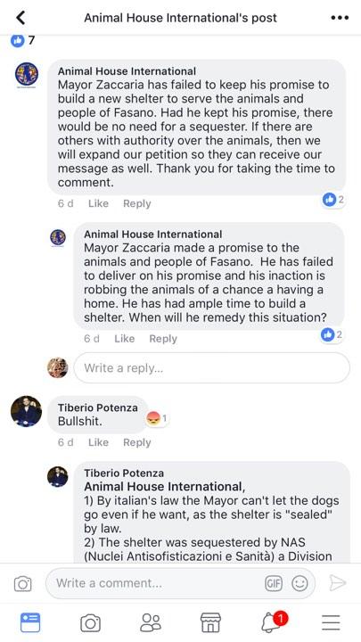 tiberio animal house international mayor zaccaria of fasano