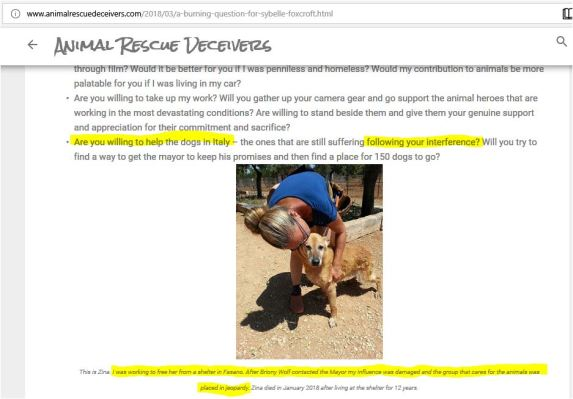 animal rescue deceivers blaming whistleblowers for the 150 dogs dying