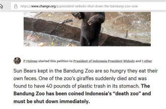 poo zoo lie2