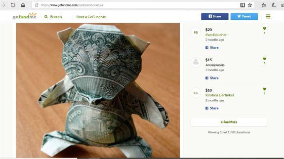 sun bear made of money from rr gfm update