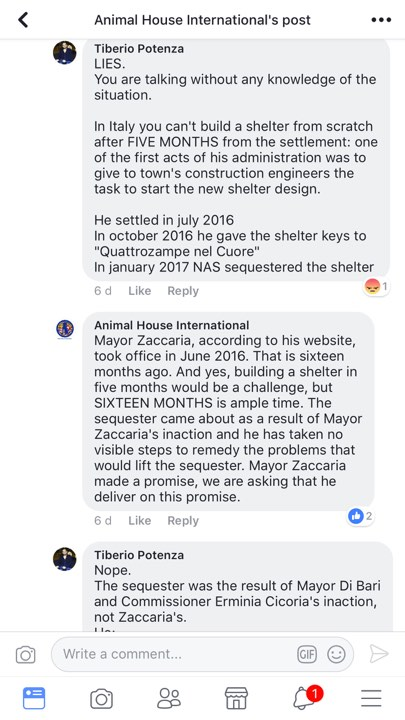 tiberio potenza with actual info regarding the shelter
