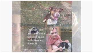 alycia comforts dog in pr