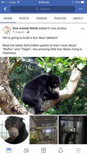 oneanimalworld were building a sun bear enclosure