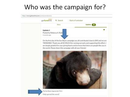 Who was the campaign for