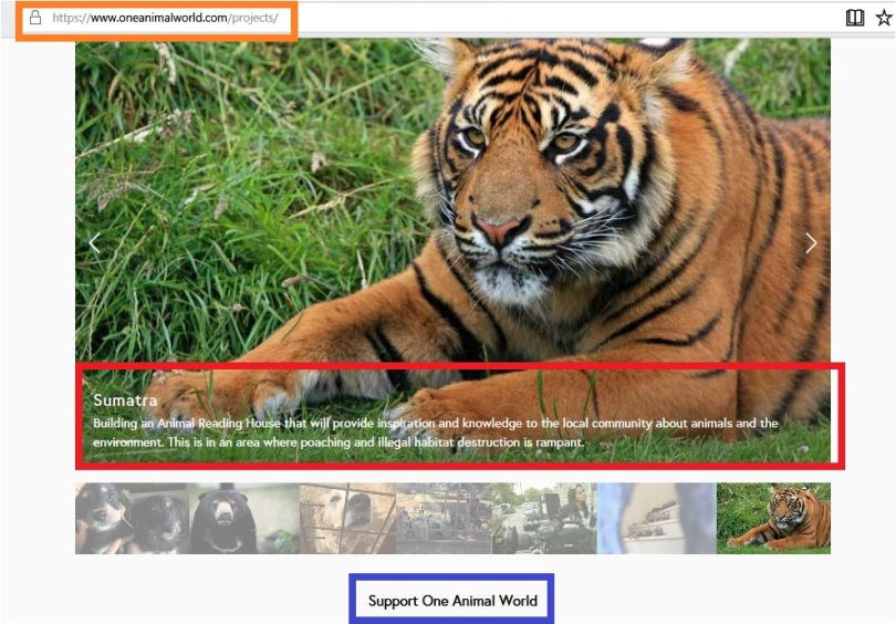 one animal world sumatra project is to build reading house but please donate