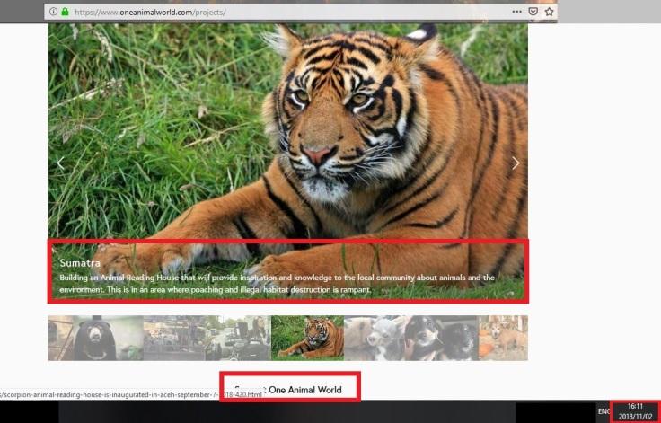 reading house still up on 2 november via one animal world