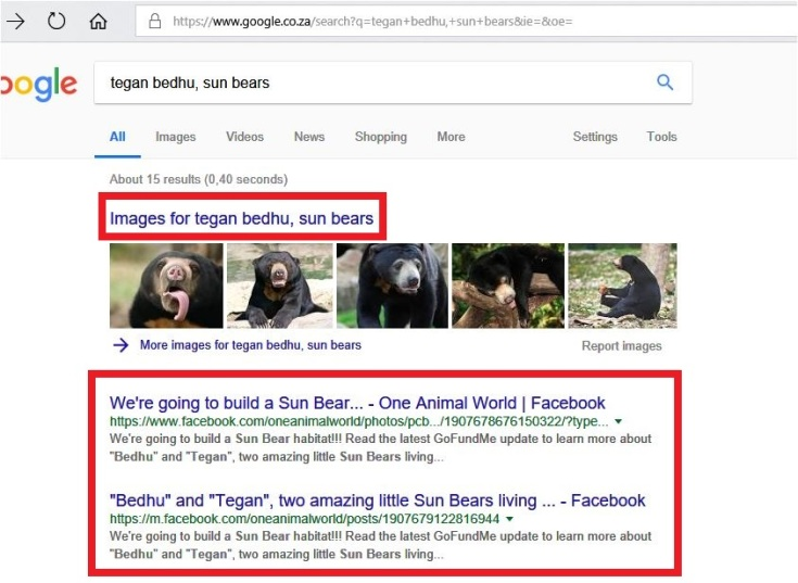 rr we are going to build a sun bear enclosure for bedhu and tegan