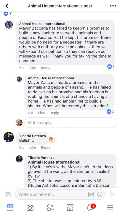 tiberio animal house international mayor zaccaria of fasano 10 november 2017 stating dogs cannot be released