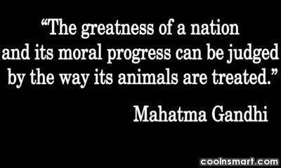 the-greatness-of-a-nation-and-its-moral-progress-can-be-judged-by-the-way-its-animals-are-treated