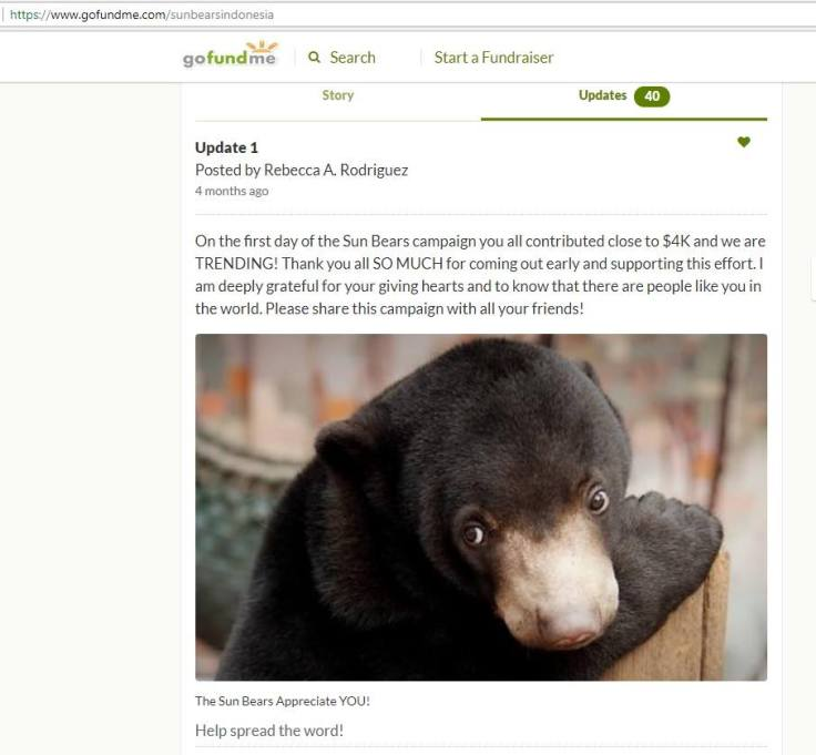 update 1 for the sun bears