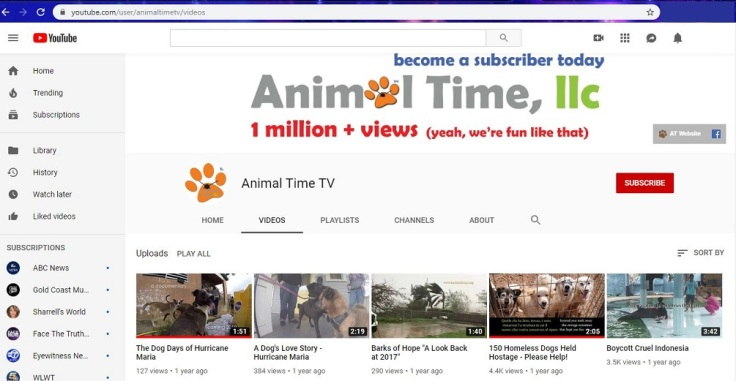 animal time you tube front page