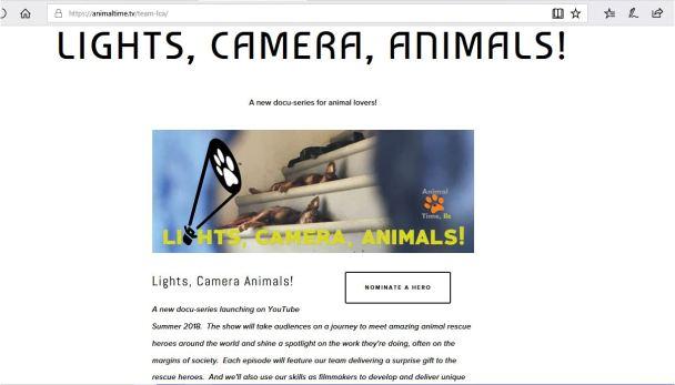 lights camera animals